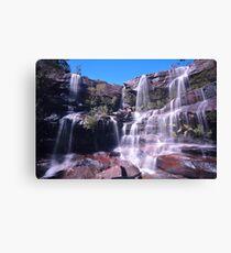 Madden Falls Canvas Print