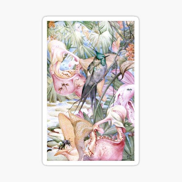 Tropisches Paradies Julius Detmold Sticker