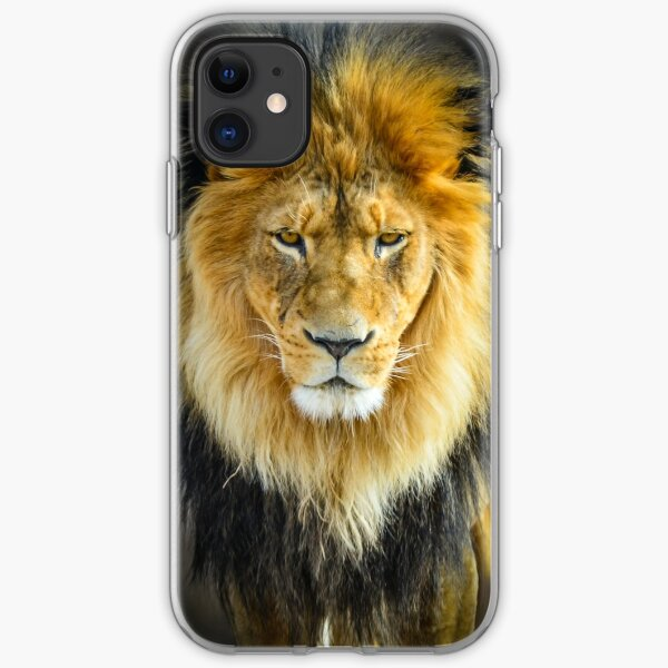 Lion with Intimidating Stare iPhone Soft Case