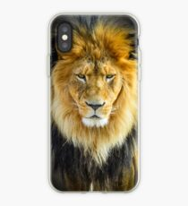 Lion with Intimidating Stare iPhone Case