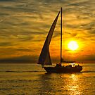 Sailing by (Tallow) Dave  Van de Laar