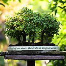 Miniature Green Forest Bonsai Pot Pedestal Leaves by Beverly Claire Kaiya