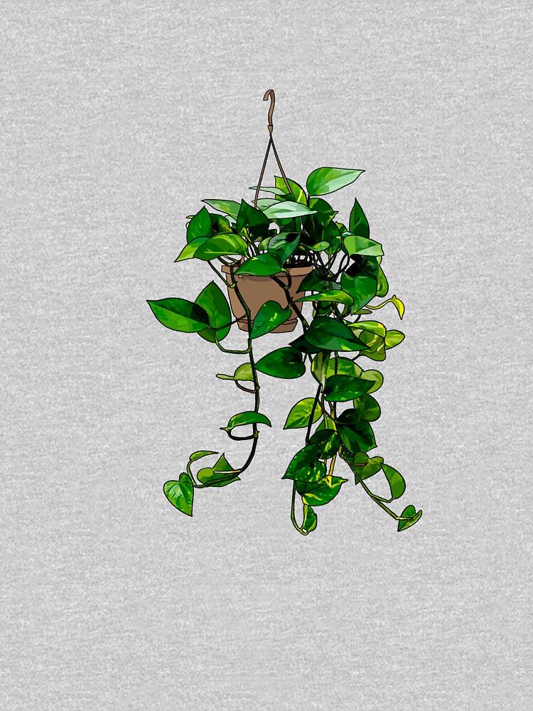 Hanging Pothos Plant by Barkmae
