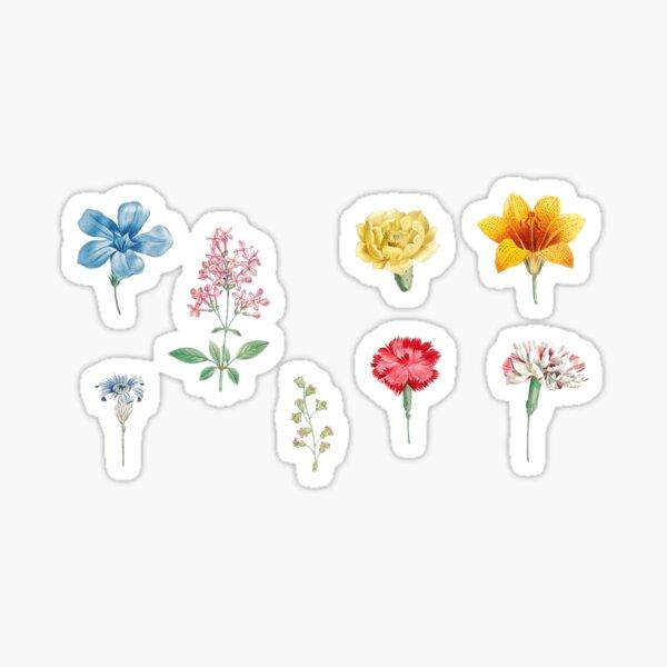 flower drawing set Sticker