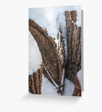 Snow-Filled Crevices Greeting Card