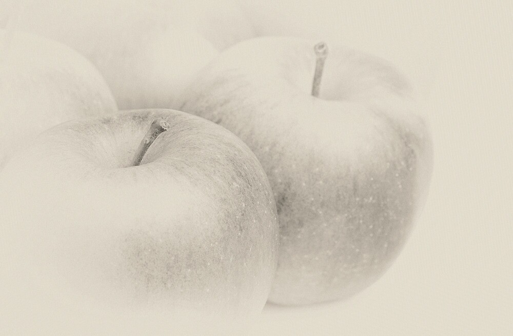Several ripe apples by sc-images