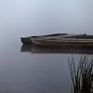 Lake Boats by martinilogic