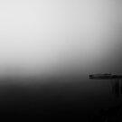 Dark Dock Morning by martinilogic