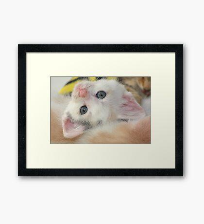 Silly girl with a cute face Framed Print