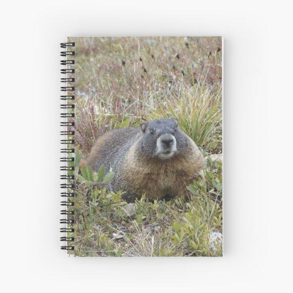 Rocky Mountain NP Marmot Spiral Notebook