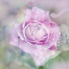 Fresh Morning Rose. Floral Abstract by JennyRainbow