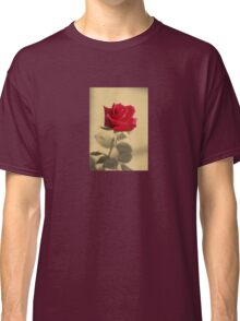 Red Rose Flower Isolated on Sepia Background Classic T-Shirt