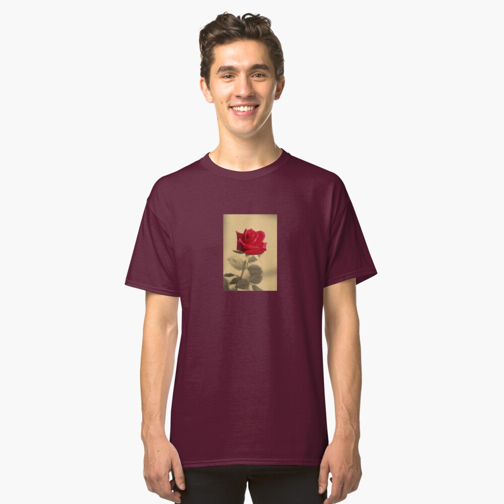 Red Rose Flower Isolated on Sepia Background Classic T-Shirt Front