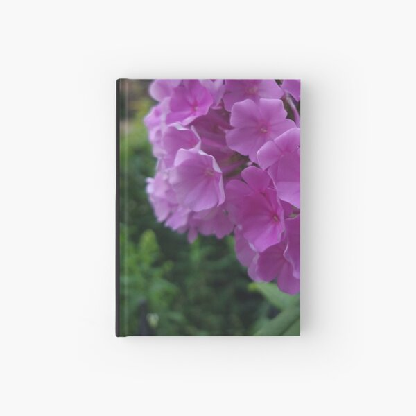 Fuchsia Flower Hydrangeas Photo Design Hardcover Journal