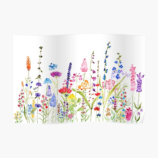 colorful wild flower field  Poster