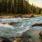 River, British Columbia by Robbie Labanowski