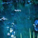 Monet's Pond by fairwood63