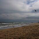 Ocean Grove by Debra Fedchin