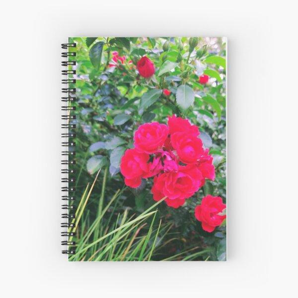 Red Rose Bunch Floral Photo Design Spiral Notebook