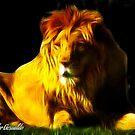 Lion by Linda Miller Gesualdo