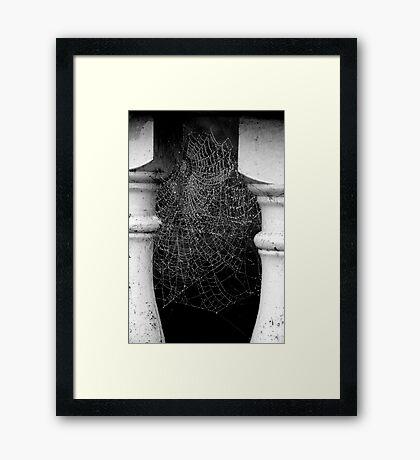 Multiple Occupancy Framed Print