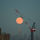 Harvest Moon Over Manhattan by Kevin Koepke