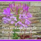 Flowers Everywhere by Paula Tohline  Calhoun