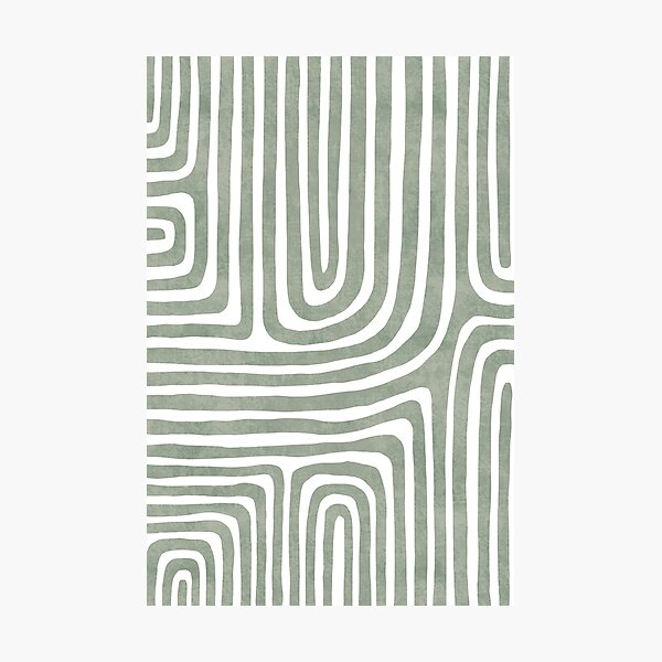 Sage green line art Photographic Print
