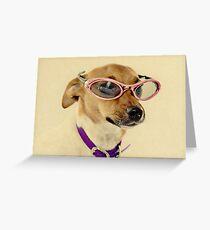 Fabulous Vintage Sunglasses Dog Greeting Card