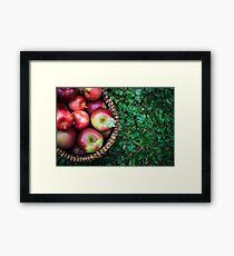 Apple Basket Framed Print