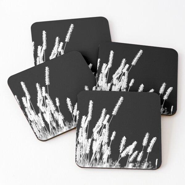 Moonlight Meadowgrass Coasters (Set of 4)