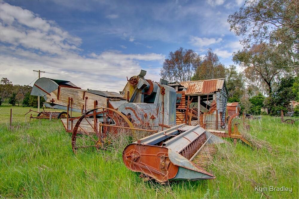 Rusting Away  Rural NSW  by Kym Bradley