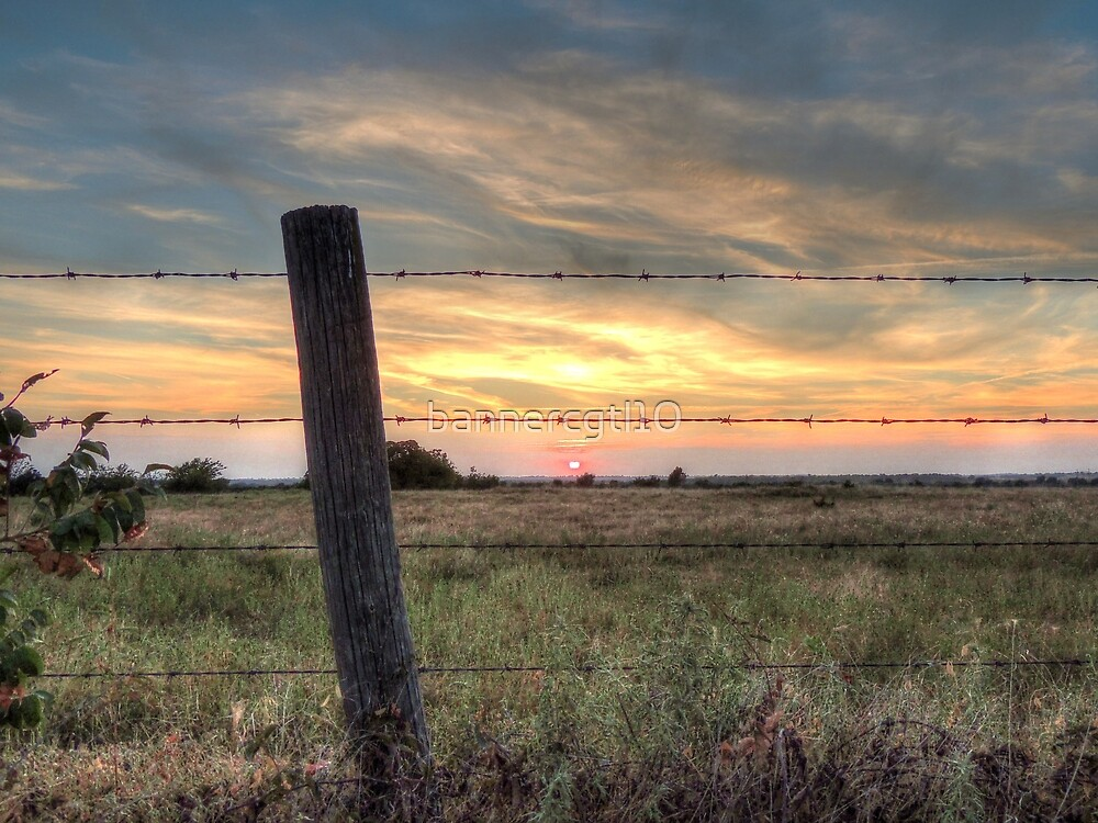Just on the Other Side of the Fence by bannercgtl10