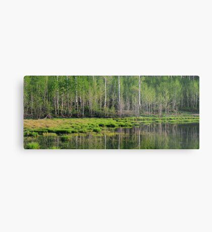 The Emerald Forest Metal Print