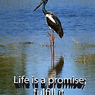 Life is a promise; fulfill it. by JuliaKHarwood