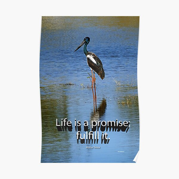 Life is a promise; fulfill it. Poster