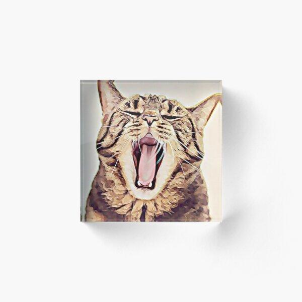 Wild Thing Tabby Cat Art Acrylic Block