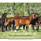 2014 November   New Beginnings Herd by Ellen  Holcomb