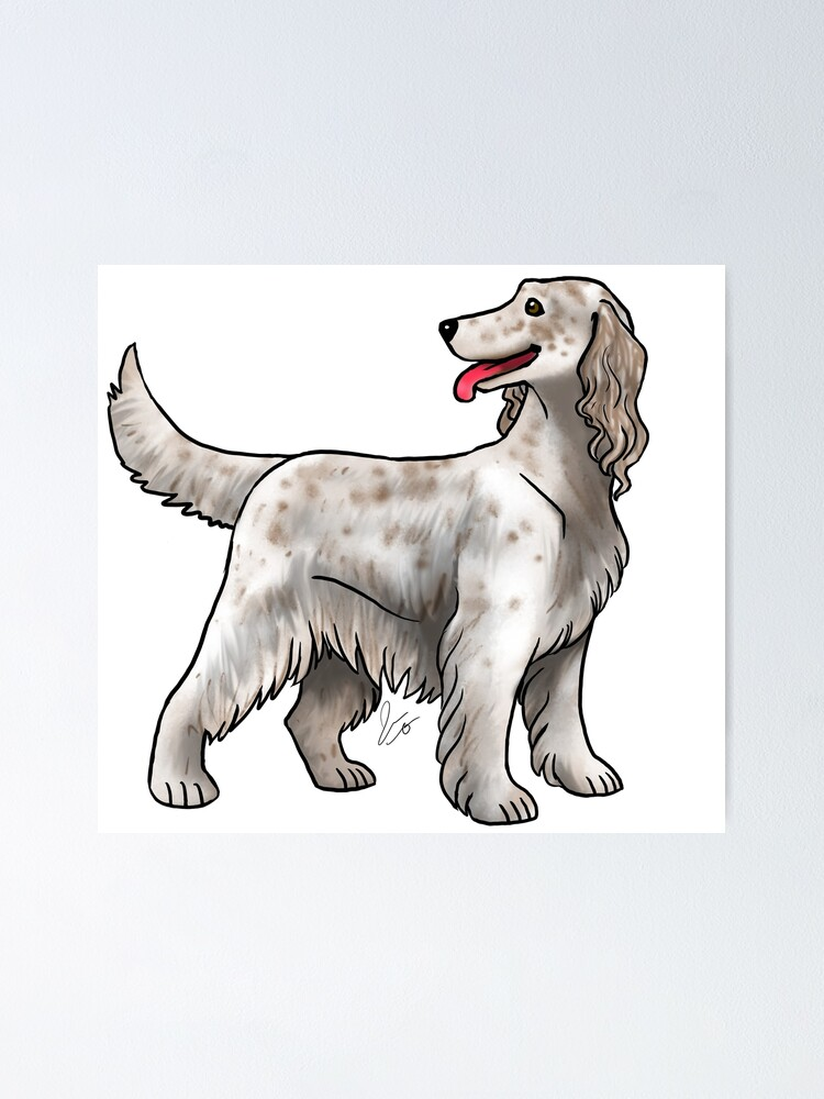 Alternate view of Irish Setter - Spotted Poster