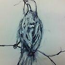Inky Sparrow by Jeanette  Treacy
