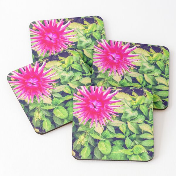 Pink Dahlia in the garden Coasters (Set of 4)