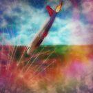 Accidental Landing by Linda Miller Gesualdo