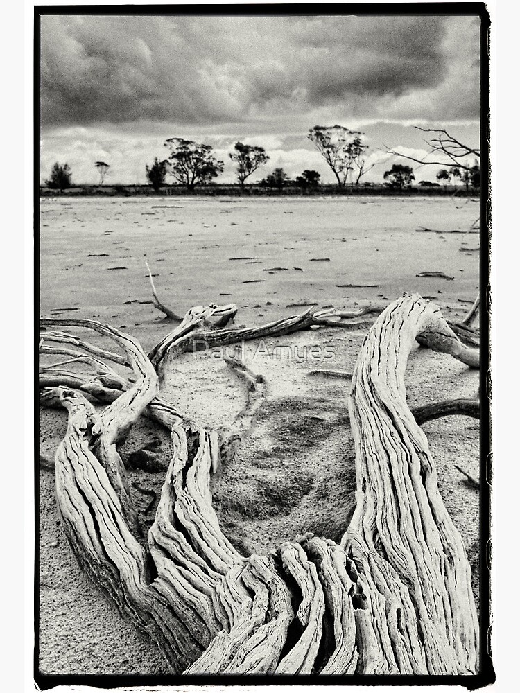 Yenyenning Lakes by AmyesPhotograph