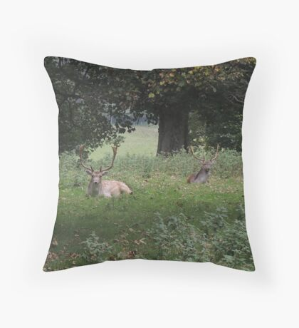 Two Stags (Dinefwr Deer Park) Throw Pillow