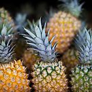 Pineapples by Gavin Kerslake