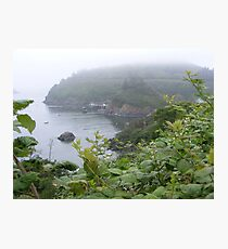 Misty Harbor  Photographic Print