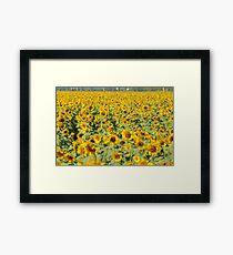 Amarilla Swoon Framed Print