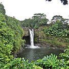 Rainbow Falls, Hawaii by Joni  Rae