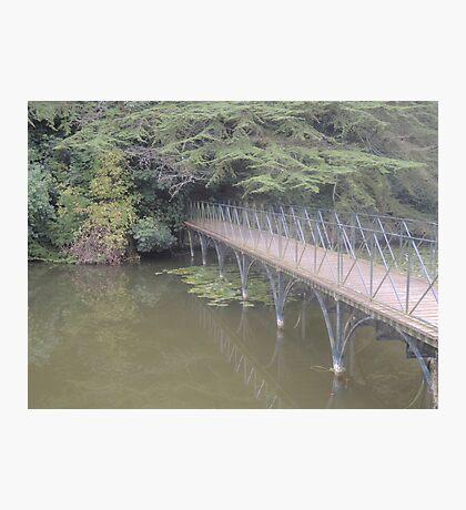 Peaceful Bridge (Blenheim Grounds) Photographic Print