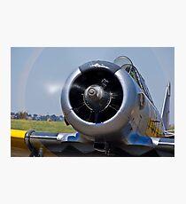 North American AT-6 Harvard — 7072 Photographic Print